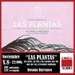 Plantes avec Rosana Barranco